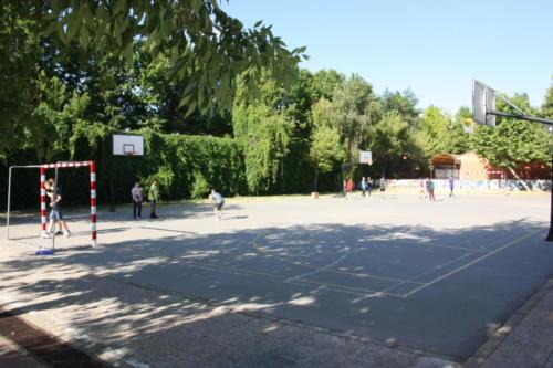 Tri-basket